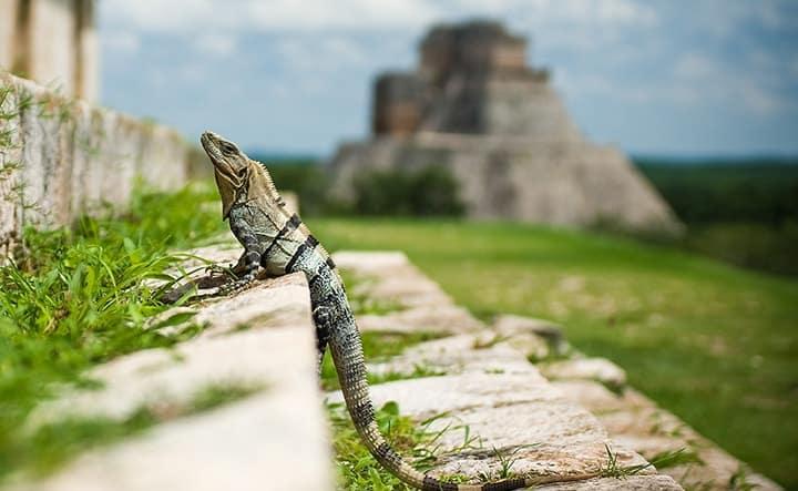 Visitez les ruines d'Uxmal dans la région du Yucatán