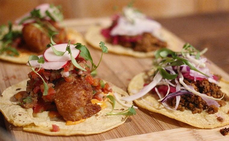 Que mange ton au Mexique